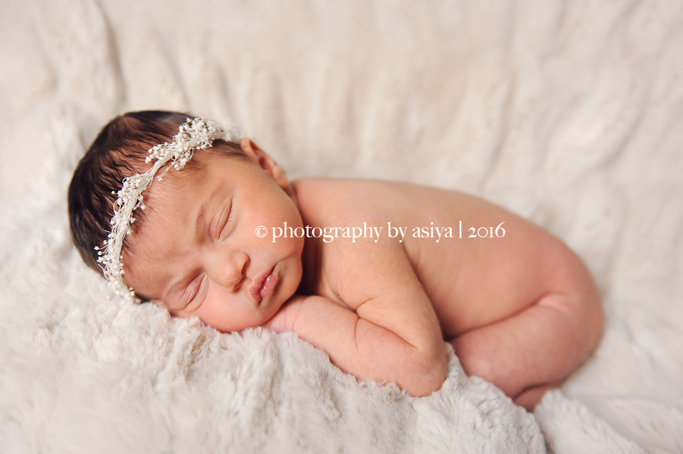 You might also like newborn with dog upper east side newborn photographer